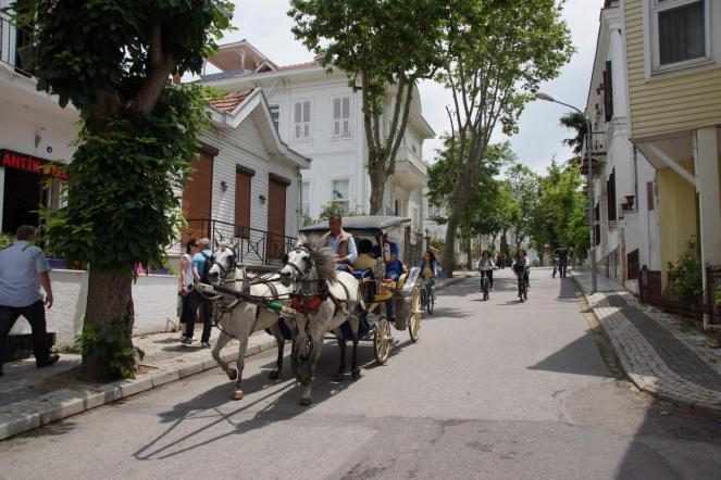 Paulis-Istanbul-2015 (12)