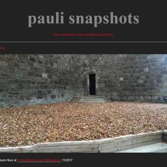 http://ralfpauli.tumblr.com