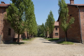 Krakau-2018 (349)