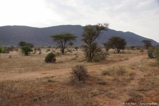 Samburu_1 (12)