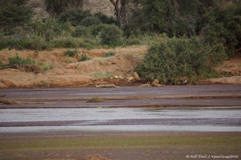 Samburu_1 (20)