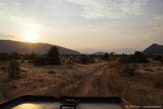 Samburu_1 (26)