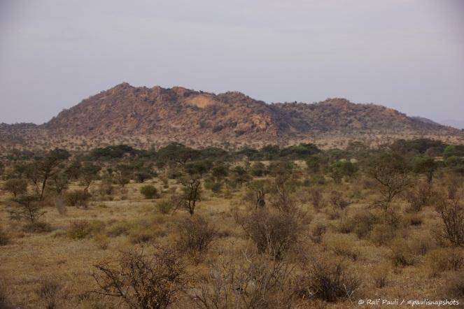 Samburu_1 (28)