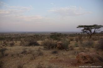 Samburu_1 (30)