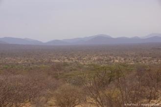 Samburu_1 (45)