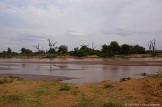 Samburu_1 (6)