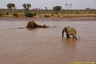 Samburu_2 (124)