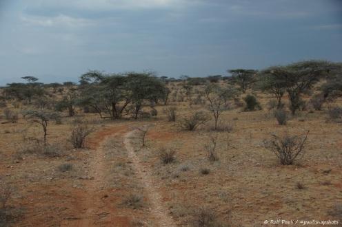 Samburu_2 (16)