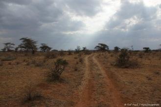 Samburu_2 (17)