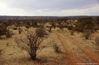 Samburu_2 (27)