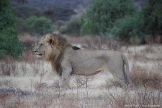 Samburu_2 (47)