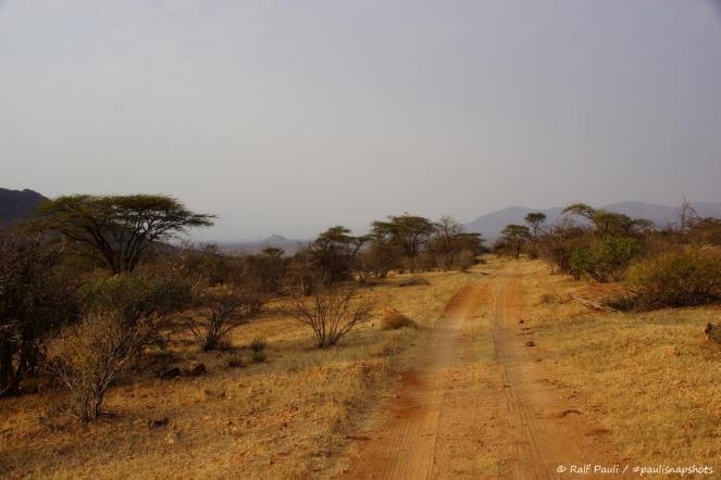 Samburu_2 (64)