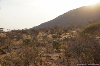 Samburu_2 (65)