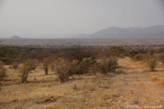 Samburu_2 (67)