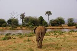 Samburu_2 (7)