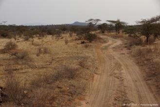 Samburu_2 (70)